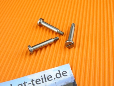 Screw set for horn contact